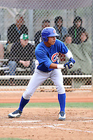 Willson Contreras of the Chicago Cubs participates in intrasquad spring training games at the Cubs complex on March 21, 2011  in Mesa, Arizona. .Photo by:  Bill Mitchell/Four Seam Images.