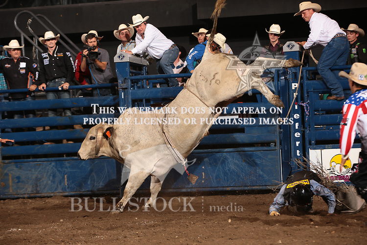 Brennon Eldred attempts to ride Dakota Rodeo/chad Berger/Clay Struve/H&C Bucking Bulls's Mental Revenge during the second round of the Bismarck Real Time Pain Relief Velocity tour PBR. Photo by Andy Watson