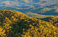 View of tree covered hills with fall color from Caesar's Head