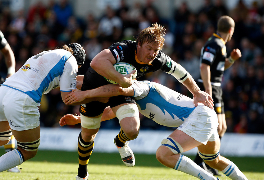 Photo: Richard Lane/Richard Lane Photography. London Wasps v Glasgow Warriors. Heineken Cup. 17/10/2010. Wasps' Andy Powell attacks.