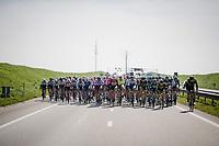 and the race is on!<br /> <br /> 107th Scheldeprijs (1.HC)<br /> One day race from Terneuzen (NED) to Schoten (BEL): 202km<br /> <br /> ©kramon