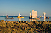 Traditional malagasy boats (pirogues) setting out to sea