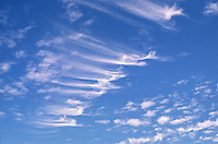 "This wisps of cloud known as Cirrus Uncinus or ""mares tails"" form in an interesting row over central Oklahoma."