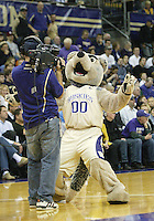 20 November 2009:  The Washington Huskies mascot Henry played it up in front of the FSN camera crew during a time out in the game against San Jose State. Washington won 80-70 over San Jose State at the Bank of America Arena in Seattle, WA.