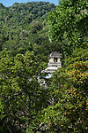 The Palace tower through the trees in the ruins of the Mayan city of Palenque,  Palenque National Park, Chiapas, Mexico.  A UNESCO World Heritage Site.