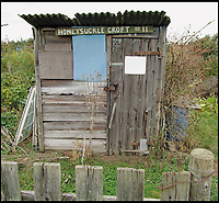 BNPS.co.uk (01202 558833)<br /> Pic: AmberleyPublishing/BNPS<br /> <br /> The homely shed has always been a vital component of allotments, here given a rural name on a group of allotments on the edge of town.<br /> <br /> These fascinating old pictures show that allotments have been a passion of the British for centuries.<br /> <br /> Today, more than 90,000 people are on waiting lists to get their own little patch of land to grow vegetables, and the pastime was just as popular in the early years of the 20th century.<br /> <br /> Garden historian and lecturer Twigs Way has sourced dozens of images of green-fingered Brits tending to their allotments during the 'allotment craze' amongst the middle classes sparked by the Allotments Act of 1908 which required councils to supply them when demanded.<br /> <br /> Families would decamp to the allotment on a Sunday and picnic among the cabbages, dividing tasks with the husband digging, the wife collecting crops and the children weeding or caterpillar picking.<br /> <br /> They grew cabbage, carrots, leeks, parsnips, beet, marrow and spinach while also staying faithful to the Victorian favourites seakale, salsify, scorzonera and asparagus.<br /> <br /> The allotments helped keep the British fed during the two world wars but fell out of favour in the 1960s and 1970s with elderly plot holders cast as villains in the battle to free up land for the housing boom.<br /> <br /> But, prompted by a desire amongst Brits to reconnect with the land, they are now in the throes of a full-scale revival.