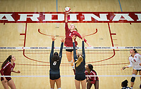 STANFORD, CA - November 2, 2018: Kathryn Plummer, Audriana Fitzmorris, Morgan Hentz at Maples Pavilion. No. 1 Stanford Cardinal defeated No. 15 Colorado Buffaloes 3-2.