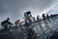 floating peloton<br /> <br /> 2013 Tour of Britain<br /> stage 1: Peebles - Drumlanrig Castle, 209km