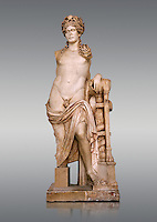 Second Century Roman statue of Apollo excavated from the Theatre of Carthage. The Bardo National Museum, Tunis, Tunisia. Inv No C939.   Against a grey background.