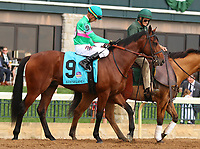 "October 07, 2018 : #9 Hide the Demon and jockey Corey Lanerie in the 1st running of The Indian Summer $200,000 ""Win and You're In Breeders' CupJuvenile Turf Sprint Division"" for trainer Mark Casse and owner John Oxley  at Keeneland Race Course on October 07, 2018 in Lexington, KY.  Candice Chavez/ESW/CSM"