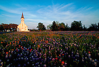 Rural church in field of bluebonnets, Shulenburg, Texas