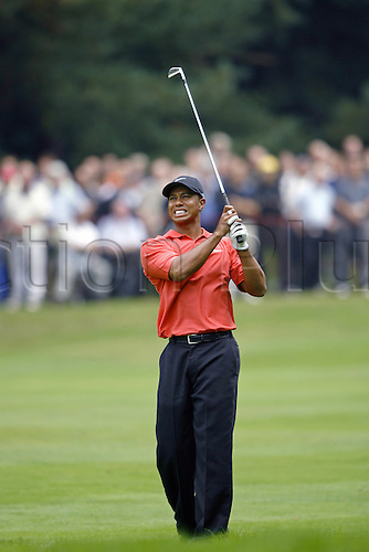 14 September 2006: American golfer Tiger Woods (USA) looks into the distance after playing an iron shot during the HSBC World Match Play Championship played on the West Course, Wentworth. Photo: Neil Tingle/Action Plus..060914 golf golfer golfers