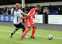 Pictured: Gregor Zabret of Swansea Saturday 11 July 2015<br />