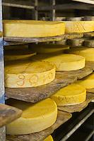 Europe/France/73/Savoie/Val d'Isère: Fromage à raclette dans la cave d'affinage la Ferme de l'Adroit