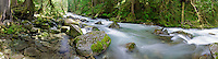 Panoramic view of water cascading down a rocky section of Newhalem Creek in North Cascades National Park, Washington State