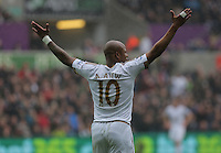 Andre Ayew of Swansea City protests to match referee during the Barclays Premier League match between Swansea City and Liverpool at the Liberty Stadium, Swansea on Sunday May 1st 2016