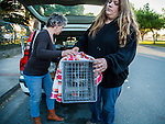Susan Smith and another volunteer for H.A.R.P. (Homeless Animal Response Program), of Antioch, transfer a recently trapped cat in Antioch, California, on Friday, March 21, 2014.  Photo/Victoria Sheridan