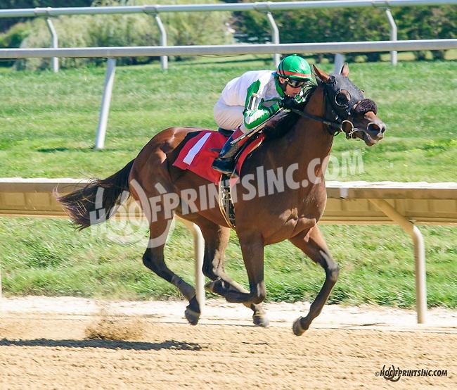 Drexler winning at Delaware Park on 9/23/15