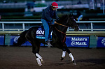 October 30, 2019: Breeders' Cup Juvenile Turf entrant Billy Batts, trained by Peter Miller, exercises in preparation for the Breeders' Cup World Championships at Santa Anita Park in Arcadia, California on October 30, 2019. Michael McInally/Eclipse Sportswire/Breeders' Cup/CSM