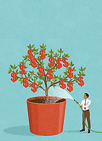 Happy businessman watering dollar money tree