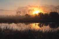 Everglade National Park, FL