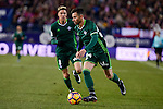 Real Betis's Jonas Martin and Ruben Castro during La Liga match between Atletico de Madrid and Real Betis at Vicente Calderon Stadium in Madrid, Spain. January 14, 2017. (ALTERPHOTOS/BorjaB.Hojas)