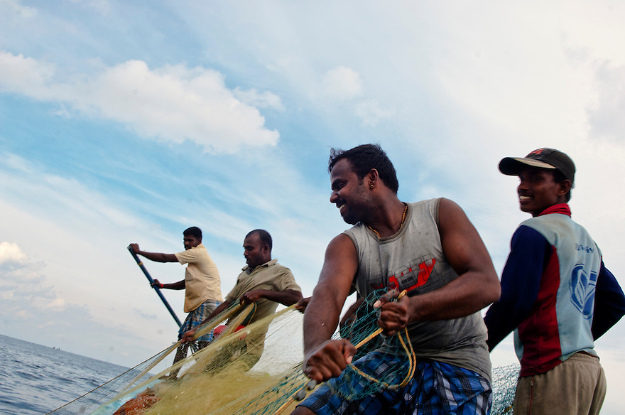Indian fishermen pull their catch from the sea off the coast of the Southern Indian state of Tamil Nadu on the 1st of November 2010.