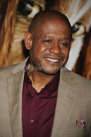 Forest Whitaker attends the NY film premiere of Where The Wild Things Are at Alice Tully Hall  in New York City. October 13, 2009. Credit: Dennis Van Tine/MediaPunch