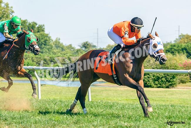 Igo Forgreatness winning at Delaware Park on 9/12/16