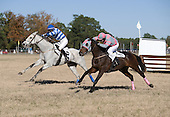 Eye Said Scat Cat (right) and Gather No Moss run to the wire in the Springdale timber contest at Camden last month.