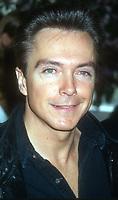 David Cassidy<br /> 1994<br /> Photo By John Barrett/CelebrityArchaeology.com