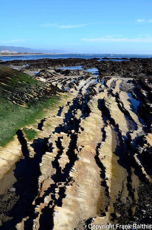 Monterey Formation at Ano Nuevo North Point