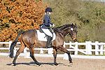 Stapleford Abbotts. United Kingdom. 30 November 2019. Class 4. Unaffiliated dressage. Brook Farm training centre. Stapleford Abbotts. Essex. UK. Credit Ellen Szalai/Sport in Pictures.~ 30/11/2019.  MANDATORY Credit Ellen Szalai/SIP photo agency - NO UNAUTHORISED USE - 07837 394578