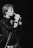 JIM CARROLL (1981)