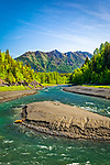 Bird Creek with green forest. Chugach Mountains in the background. Chugach State Park, Southcentral Alaska, Spring. Vertical.