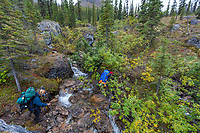 Backpackers cross a stream drainage along the Arrigetch Creek, Arrigetch Peaks, Gates of the Arctic National park, Alaska.