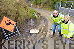 FALLING APART: David and Catherine Parish of Muingwee, Lyreacrompane who say the road through the townland will collapse completely unless remedial action is taken.
