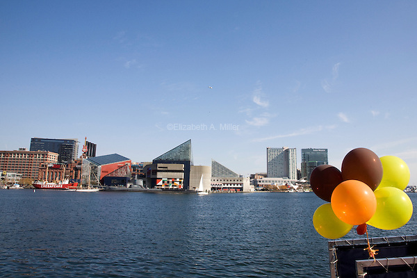 The Inner Harbor in downtown Baltimore.