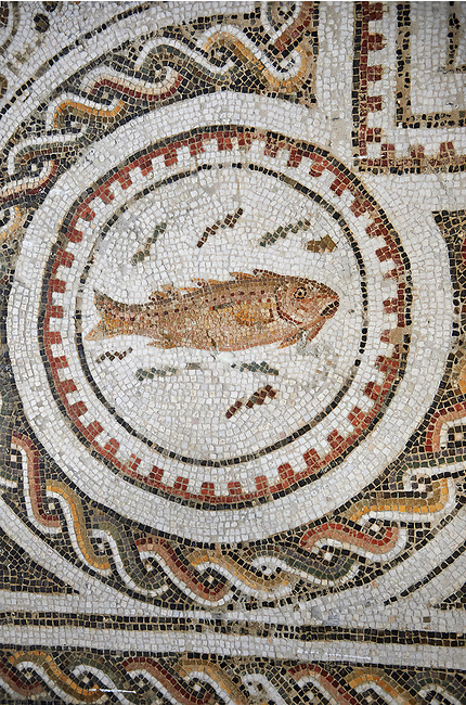 Picture of a Roman mosaics design depicting a fish in a medallion, from the ancient Roman city of Thysdrus. 3rd century AD, House in Jiliani Guirat area. El Djem Archaeological Museum, El Djem, Tunisia.