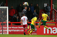 Stevenage goalkeeper, Joe Fryer makes a fine save in the first half during Stevenage vs Norwich City, Friendly Match Football at the Lamex Stadium on 11th July 2017