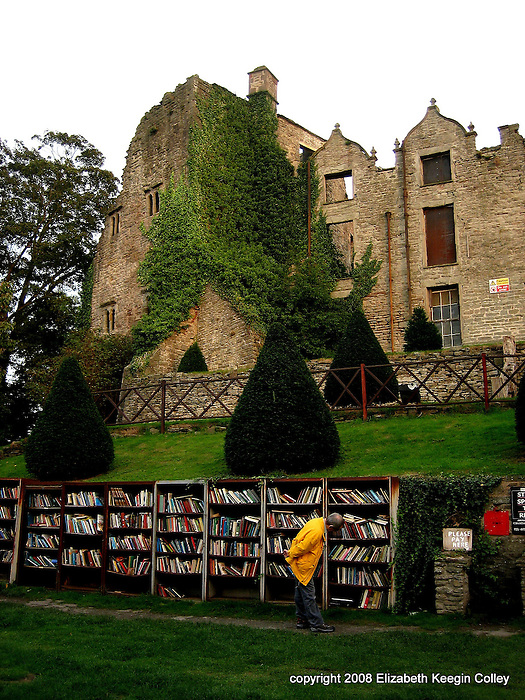 Hay Castle and outdoor shelves of books