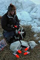 Tollef Monson booties dogs at Unalakleet. Photo by Jon Little.