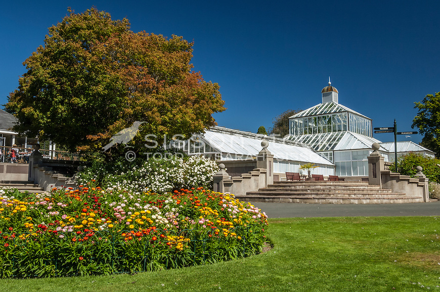 The Dunedin Botanical Gardens on a blue sky day, South Island, New Zealand - stock photo, canvas, fine art print