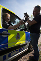 16/08/16<br /> <br /> At just 10-weeks-old, this cute little kitten from a farm in the Derbyshire Peak District has already used up a couple of her 9(99?) lives after hitching a ride under a police van bonnet.<br /> <br /> FULL STORY HERE: <br /> <br /> https://fstoppressblog.wordpress.com/missing-purr-son-hitches-ride-in-police-car/<br /> <br /> <br /> In fact, not only did the &ldquo;missing purrrr-son&rdquo; hide in the vehicle, she probably also fell asleep in her warm and cosy spot, because she managed to stay safely stowed away until the van returned to the police station, some five hours after she first climbed onboard.<br /> <br /> But even then, this little girl wasn&rsquo;t &ldquo;resisting a rest&rdquo; and didn't want her great adventure to end, because it was another 12 hours before she finally &ldquo;bailed&rdquo; and announced her presence in the Ashbourne police station carpark, with some &ldquo;fur-ball&rdquo; abuse, mewling loudly when community police officer Rachel Baggaley arrived for her morning shift. <br /> <br /> &ldquo;I can&rsquo;t believe she survived, to be honest,&rdquo; said PC Baggaley, who was unwittingly responsible for the plucky kitten&rsquo;s big trip.<br /> <br /> All Rights Reserved, F Stop Press Ltd. +44 (0)1773 550665
