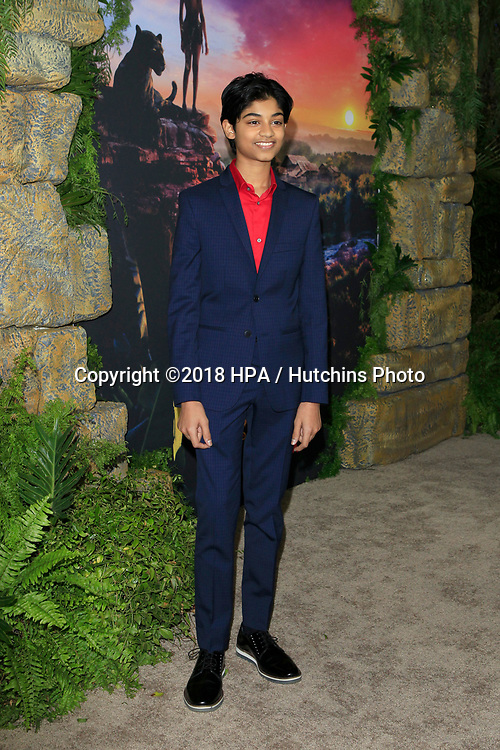 "LOS ANGELES - NOV 28:  Rohan Chand at the ""Mowgli: Legend of the Jungle"" Premiere at the ArcLight Theater on November 28, 2018 in Los Angeles, CA"