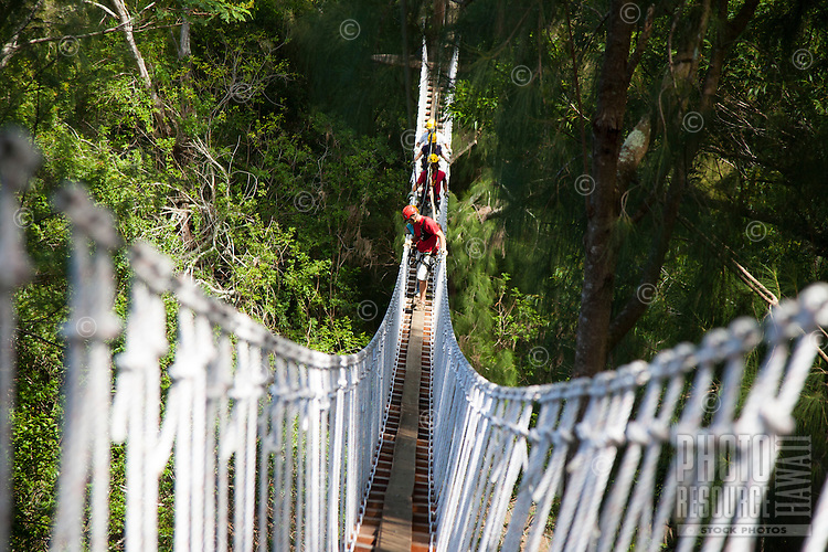Group crossing suspension bridge while Ziplining on the Big island with Kohala zipline