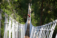 Group crossing suspension bridge while Ziplining on the Big island with Kohala zipline
