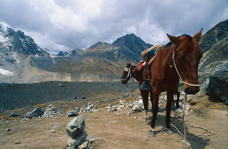 Altitude 4500 m, Salkantay trek, Peru, 2016.