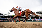 Improbable #2, ridden by Drayden Van Dyke, wins the Street Sense Stakes on Breeders' Cup World Championship Friday at Churchill Downs on November 2, 2018 in Louisville, Kentucky. Scott Serio/Eclipse Sportswire/CSM