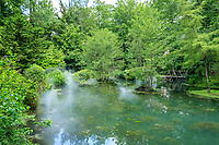 France, Indre-et-Loire (37), Amboise, Jardin et Château du Clos Lucé, le jardin de Léonard,  jardin autour du bassin alimenté par la rivière L'Amasse ou Lamasse